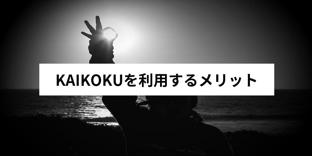 KAIKOKUを利用するメリット